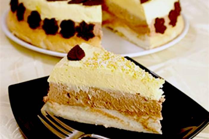 ledena-torta-s-vanilijom-i-cokoladom